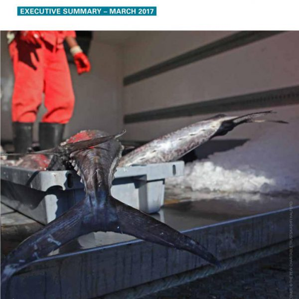 Implementation of EU seafood import controls