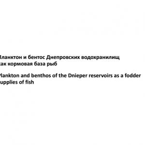 Планктон и бентос Днепровских водохранилищ как кормовая база рыб